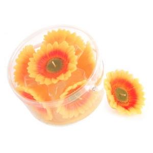 Teelichter und Kerzen - Schwimmkerzen - Sonnenblumen - Blüten